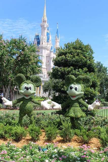 orlando-florida-walt-disney-world-is-hiring-more-than-a-thousand-workers