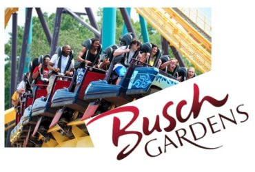 busch-gardens-unobtrusively-rules-as-floridas-roller-coaster-capital-1